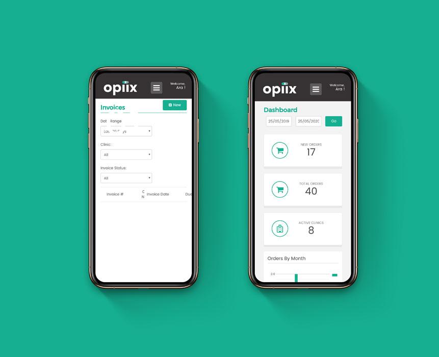 web application development for Opiix